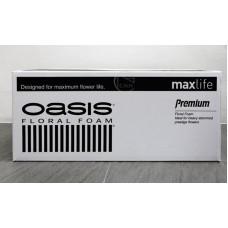 海綿-OASIS PREMIUM(黑牌) 20入